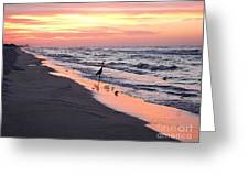 Birds At Water's Edge Greeting Card