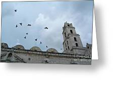Birds Flying Above The Basilica And The Monastery Of Saint Francis Of Assisi Greeting Card