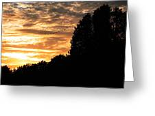 Birds Flying At Sunset Greeting Card