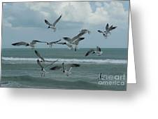Birds In Flight Greeting Card