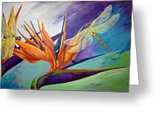 Birds In Paradise Greeting Card