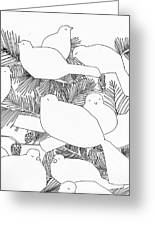 Birds In Pine Greeting Card