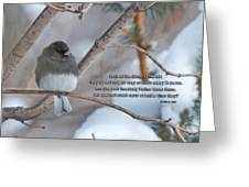 Birds Of The Air Greeting Card by David Arment