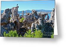 Birds On Tufa Towers-mono Lake Greeting Card
