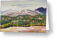 Birdseye Landscape #4 Greeting Card