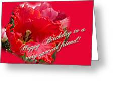 Birthday Special Friend - Red Parrot Tulip Greeting Card
