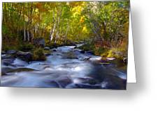 Bishop Creek In Fall Eastern Sierra Photograph Greeting Card