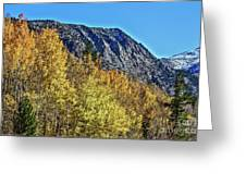Bishop Creek Mountains Greeting Card
