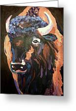 Bison At Dusk Greeting Card