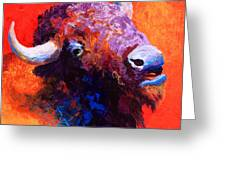 Bison Attitude Greeting Card by Marion Rose
