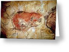 Bison From The Altamira Caves Greeting Card by Prehistoric
