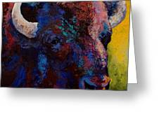 Bison Head Study Greeting Card by Marion Rose