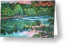 Bisset Park Rapids Greeting Card