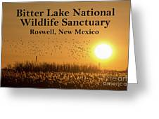Bitter Lake National Wildlife Refuge Birds, Roswell, New Mexico Greeting Card