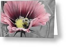 Bizzybee Greeting Card