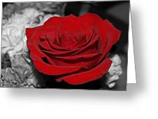 Black And Red Greeting Card