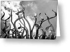 Black And White 2 Greeting Card