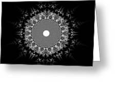 Black And White 236 Greeting Card