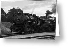 Black And White 4501 Greeting Card
