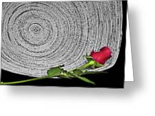 Black And White And Red All Over Greeting Card
