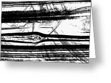 Black And White Art - Layers - Sharon Cummings Greeting Card