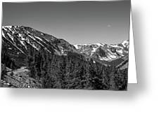 Black And White Beartooth Greeting Card