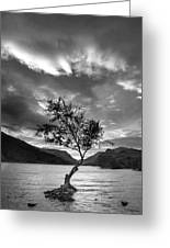 Black And White Beautiful Landscape Image Of Llyn Padarn At Sunr Greeting Card