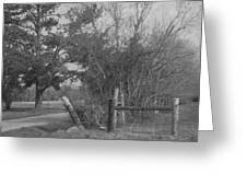 Black And White Country Scene Greeting Card