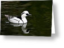 Black And White Duck Greeting Card