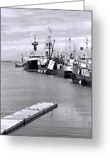 Black And White Fishing Boats On The Dock Greeting Card