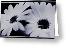 Black And White Floral Art Greeting Card