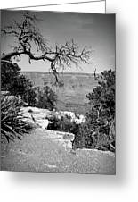 Black And White Grand Canyon 2 Greeting Card