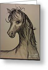 Black And White Horse Greeting Card by Ginny Youngblood