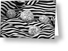 Black And White Lines And Stones  Greeting Card