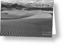 Black And White Mesquite Sand Dunes Greeting Card
