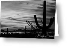 Black And White Night In Arizona Greeting Card