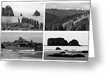 Black And White Olympic National Park Collage Greeting Card