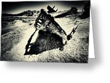 Black And White Photography Shipwreck Pinhole Greeting Card