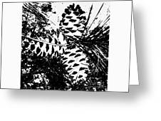 Black And White Pine Cone Greeting Card