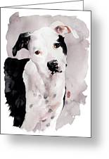 Black And White Pit Greeting Card