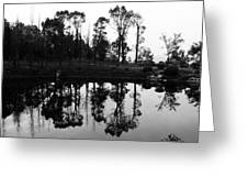 Black And White Reflected Greeting Card