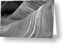 Black And White Sandstone Waves Greeting Card