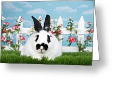 Black And White Spring Bunny Greeting Card