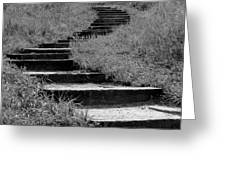 Black And White Steps Greeting Card