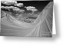 Black And White Swirling Landscape Greeting Card