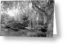 Black And White Tranquility Greeting Card