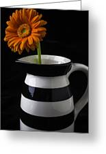 Black And White Vase With Daisy Greeting Card
