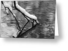 Black And White Winter Mood Greeting Card