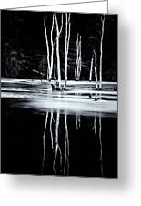 Black And White Winter Thaw Relections Greeting Card