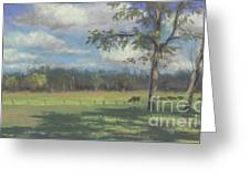 Black Angus Strolling Through The Pasture Greeting Card